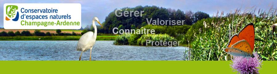 Conservatoire d'espaces naturels de Champagne Ardenne.